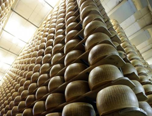 Ddl reati agroalimentari: riforma in Cdm, introdotta l'agropirateria